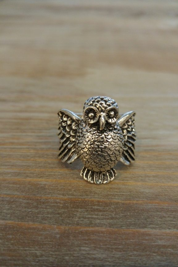 andrika-daxtylidia-owl