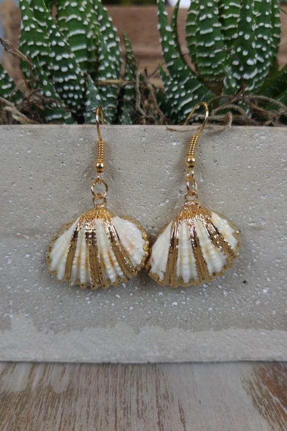 σκουλαρίκια-αχιβάδα-χρυσά